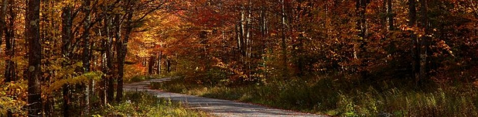 800px-Country-roads-take-me-home_-_West_Virginia_-_ForestWander-940x230